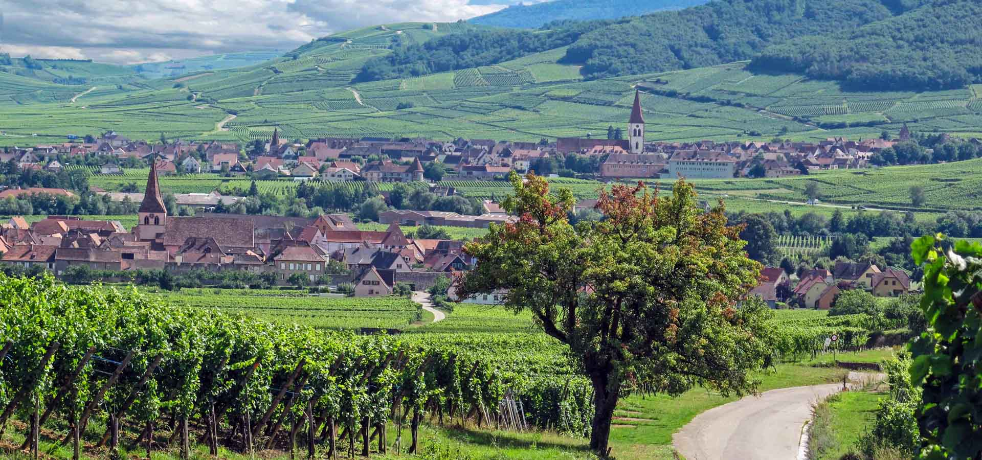 5 Minutes in Alsace